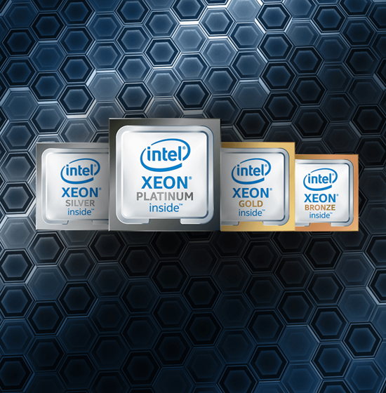 <b>Sitio web:</b> Plataforma escalable Intel® Xeon®